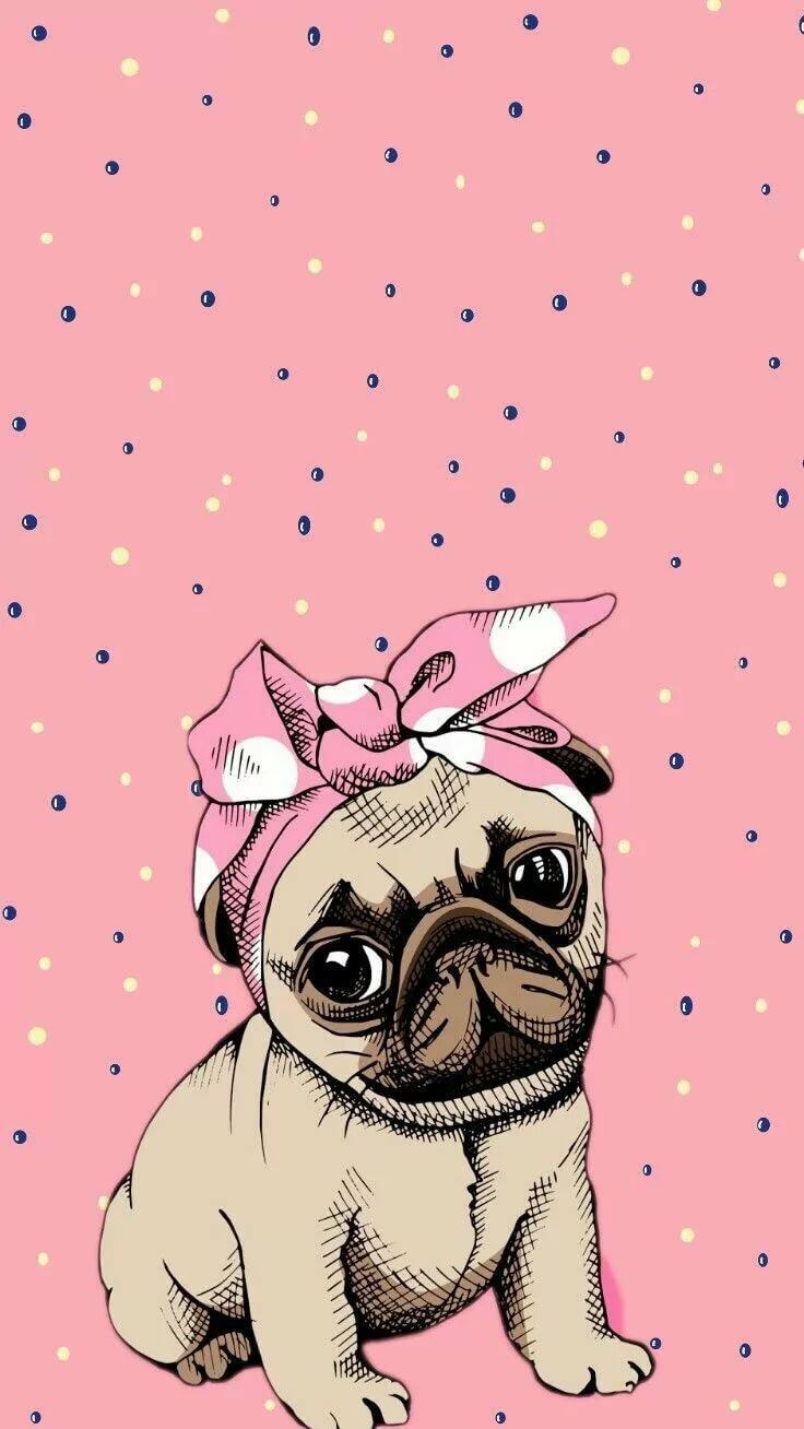 Как нарисовать открытку для подруги няшные картинки животных, открытки марта