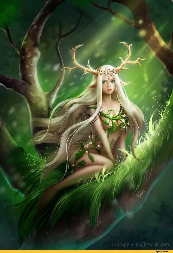 Картинки эльфов на дереве