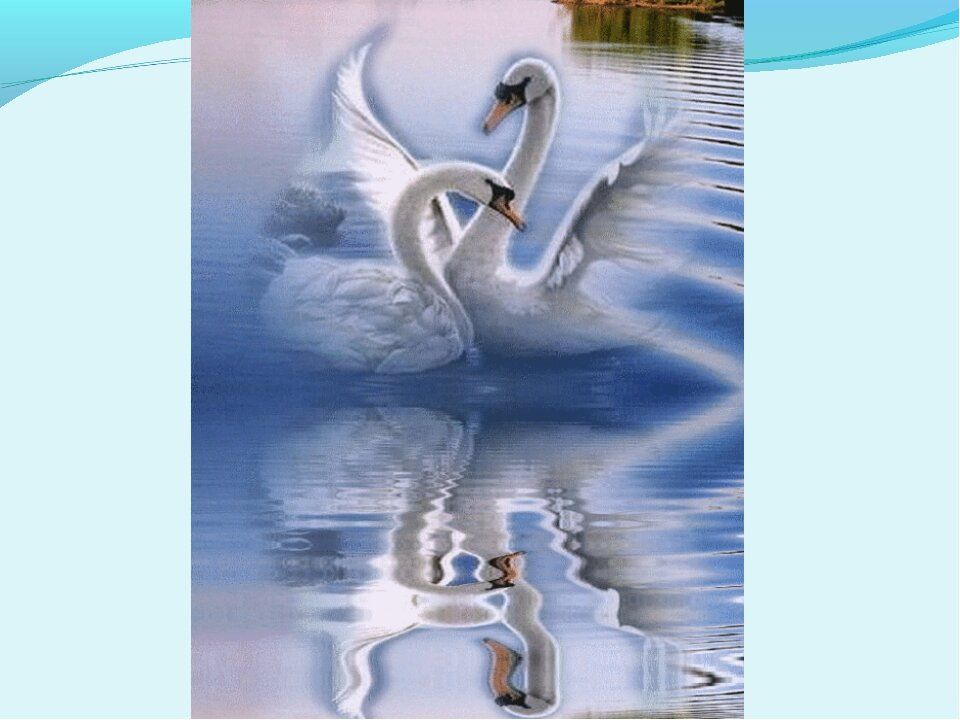 стиле лебеди картинки поздравления большим трудом приспосабливается
