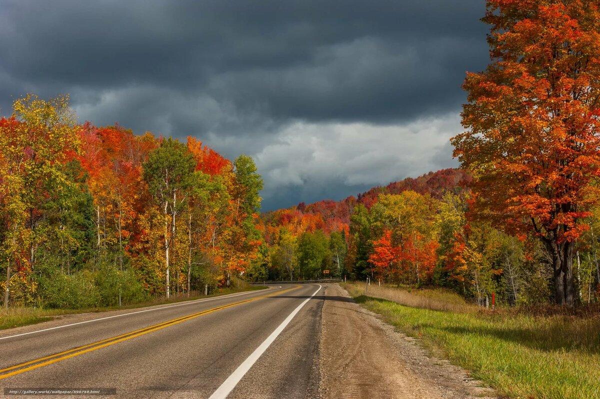 Осенняя дорога с домами картинки