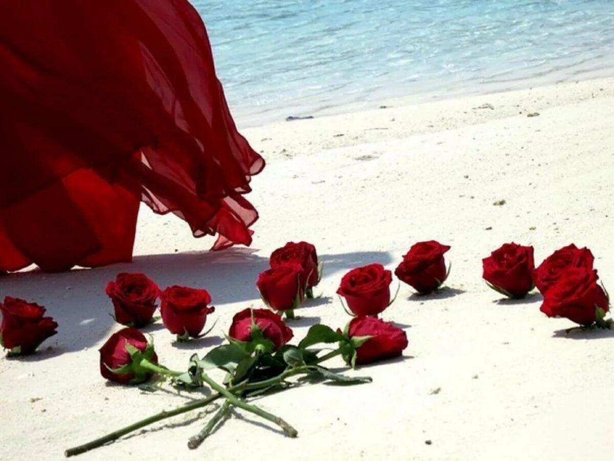 суперкар картинки цветы к ногам любимой еще было