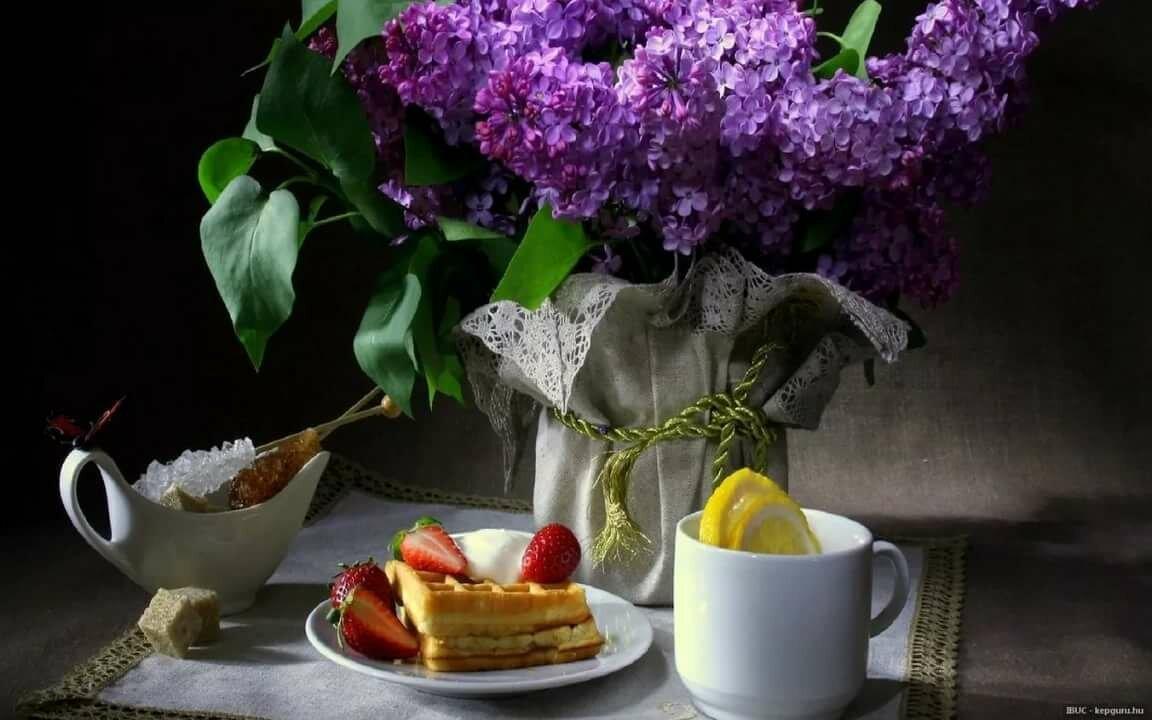 Красивая сирень картинки с добрым утром, сюрприз маме