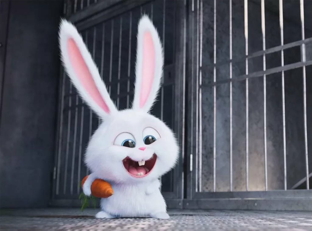 Картинки с зайцами прикольные из мультиков