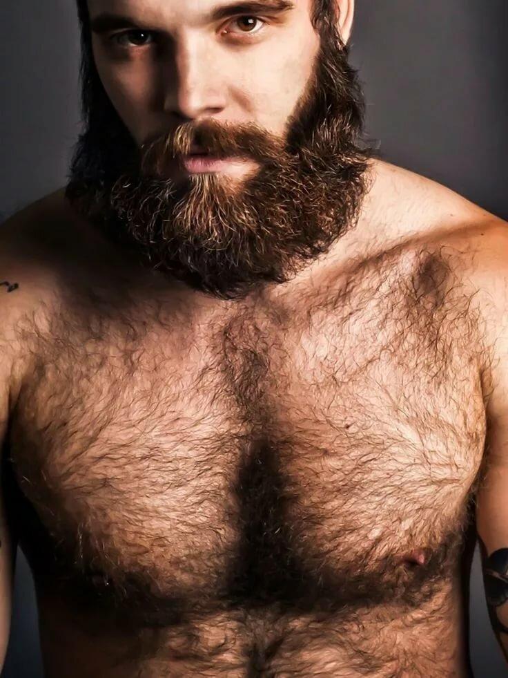 нравятся ли девушкам волосатые мужчины