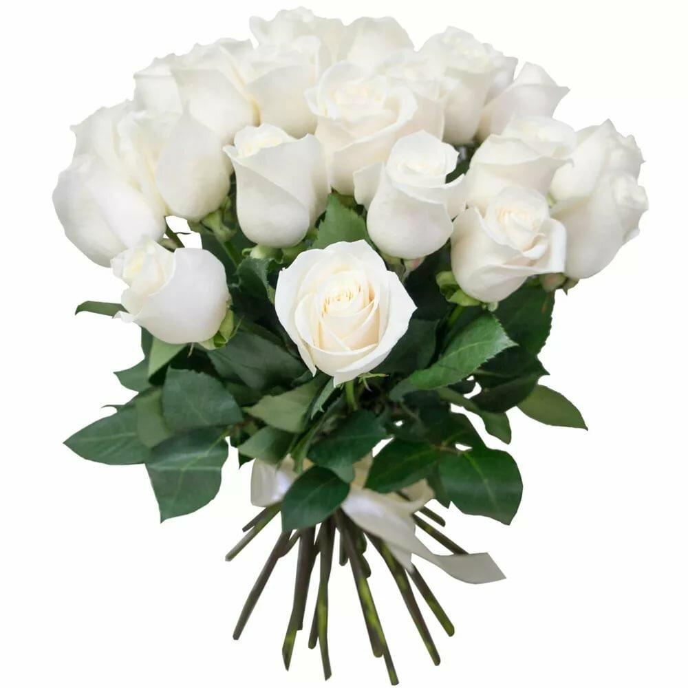 Букеты 25 белых роз йошкар-ола