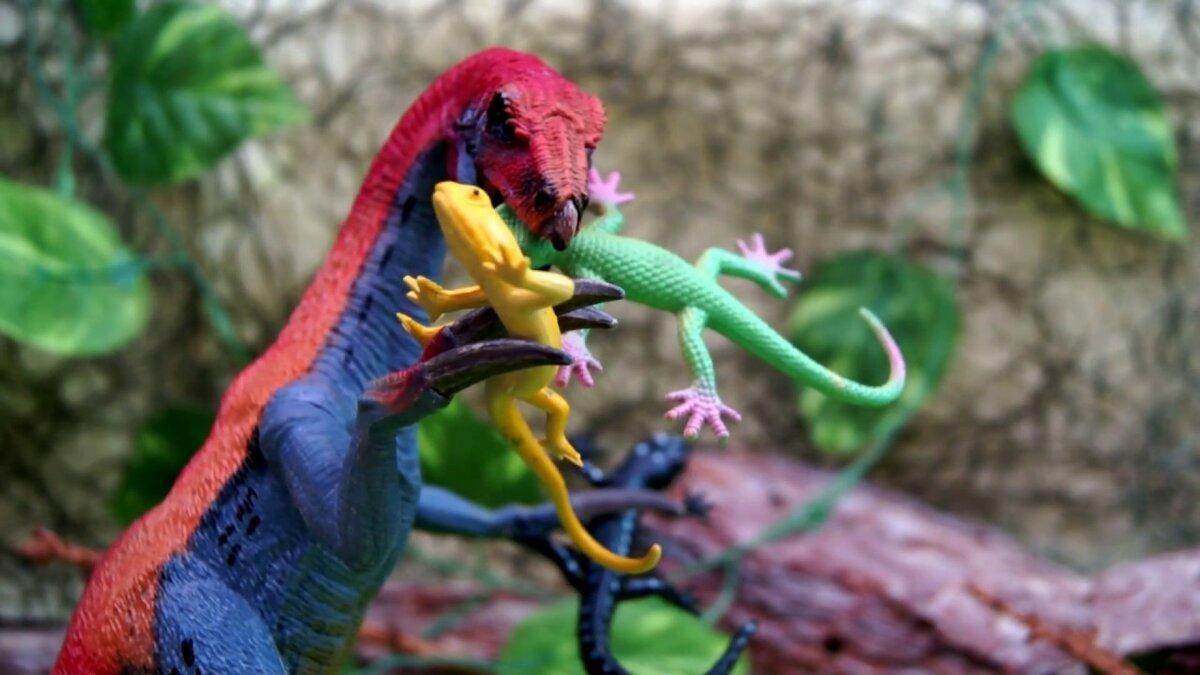 Картинки из игры ящерицы