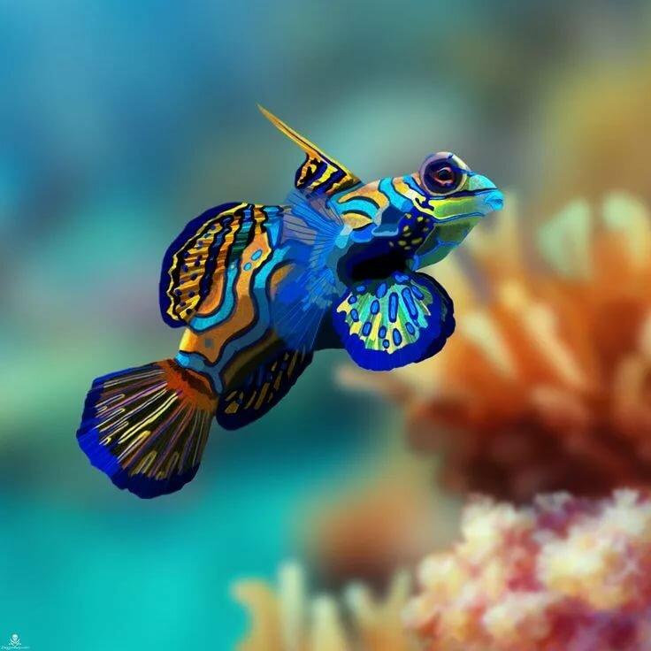 самая красивая рыба в мире фото знаю отчего, меня