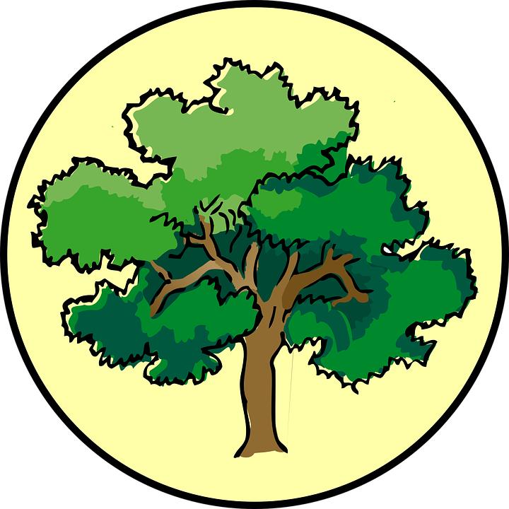 Деревья картинки для детей