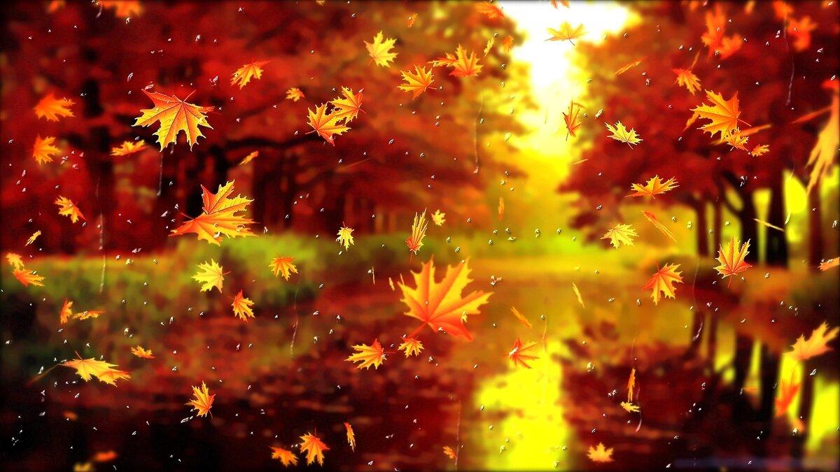 Анимационная картинка листопад
