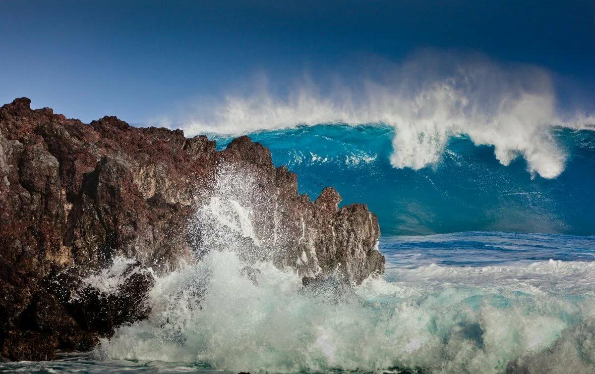 иви тихий океан смотреть картинки значительно отличаются тех