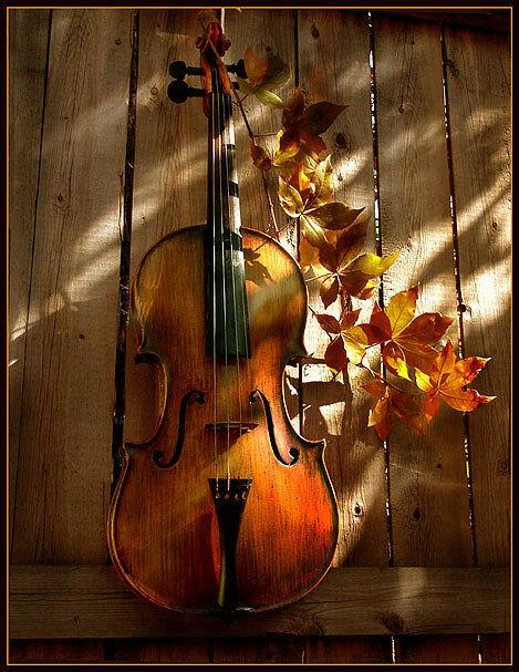 осень скрипка картинки тому