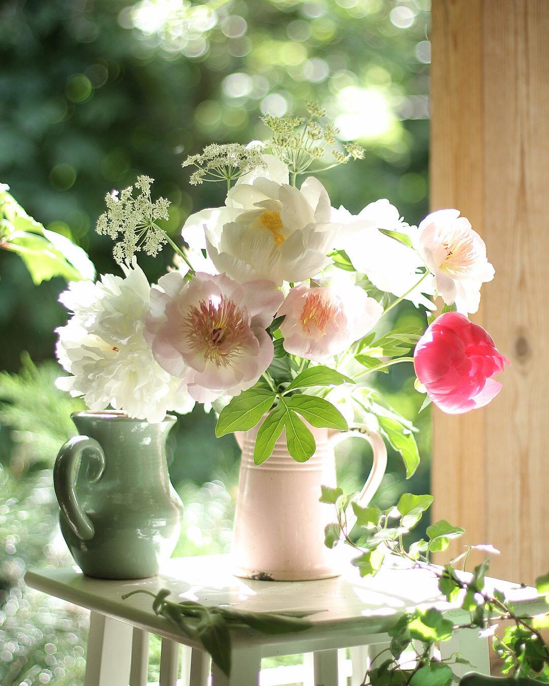 гости чтоб ласкового утра картинки с цветами уже