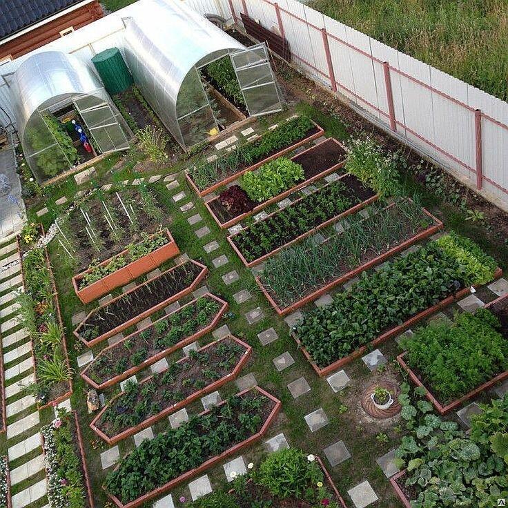 правильный сад