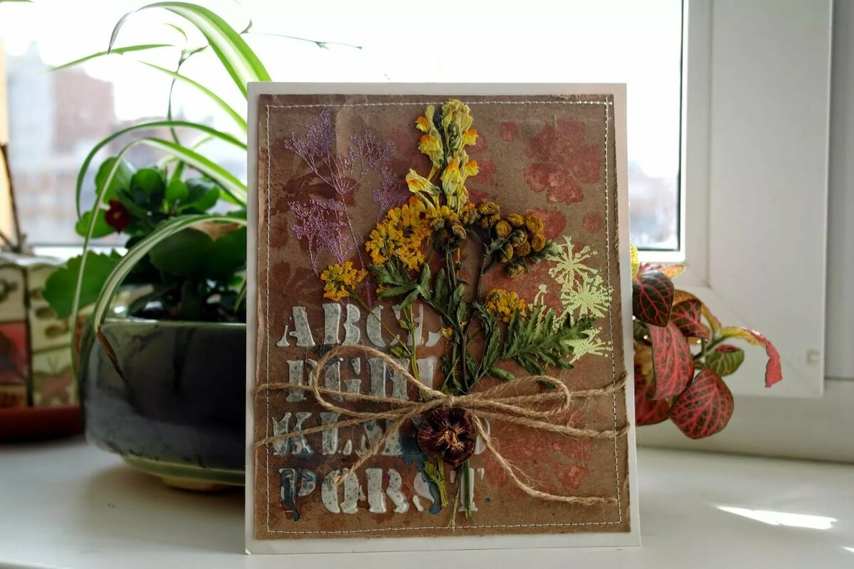 Открытки, открытки своими руками с сухоцветами