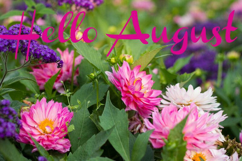 Красивые открытки августа месяца