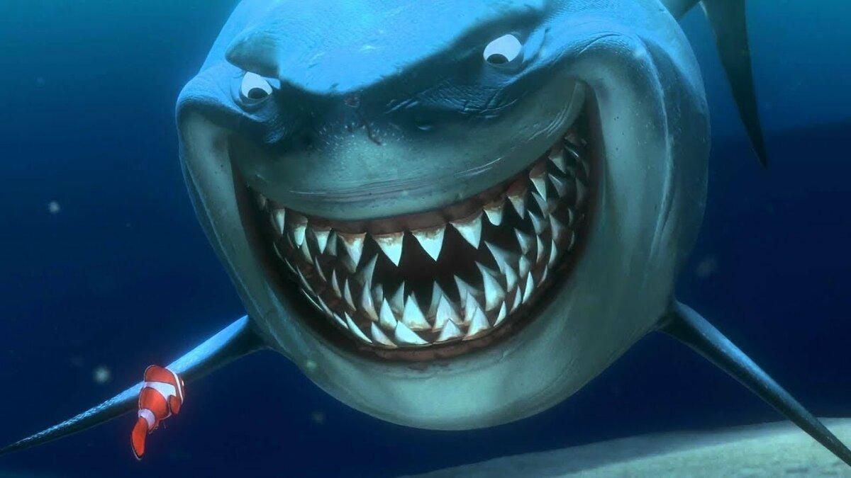 Анимационная картинка акула
