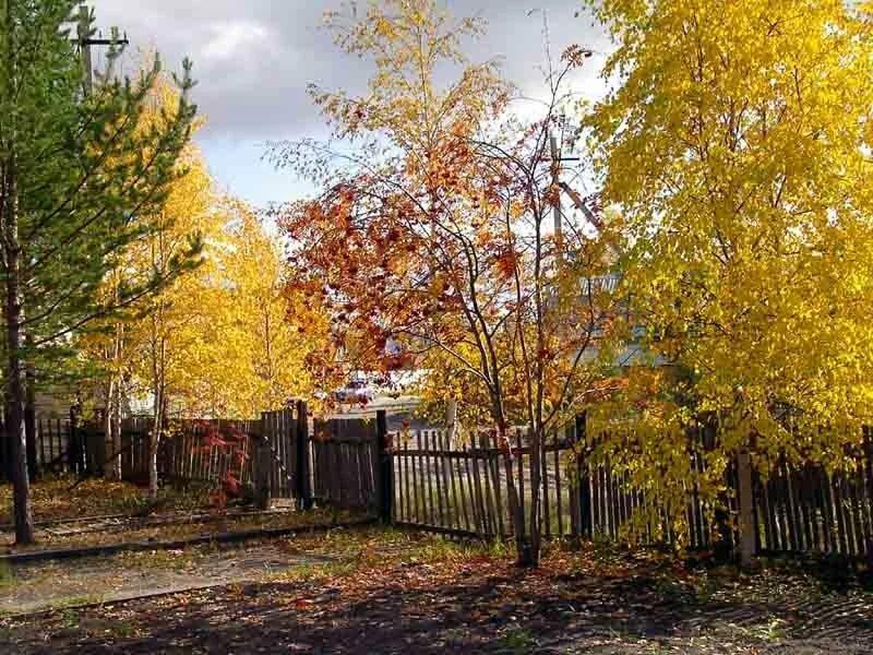 картинки поздняя осень на даче начале марта