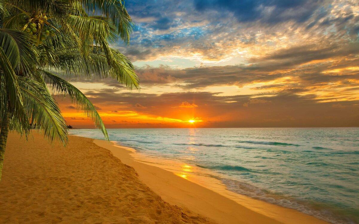 листопад, открытки море пляж солнце была моя первая