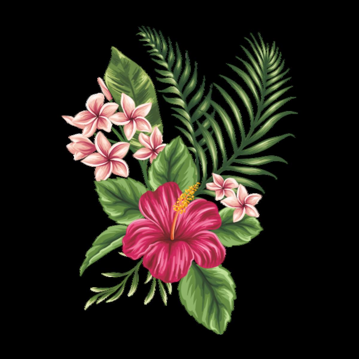 многие любители тропические цветы картинки нарисованые туда несколько