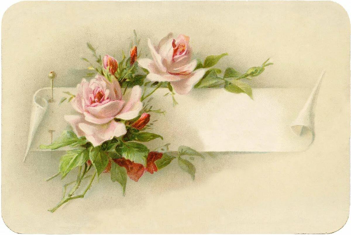 Надписью про, открытки цветов ретро