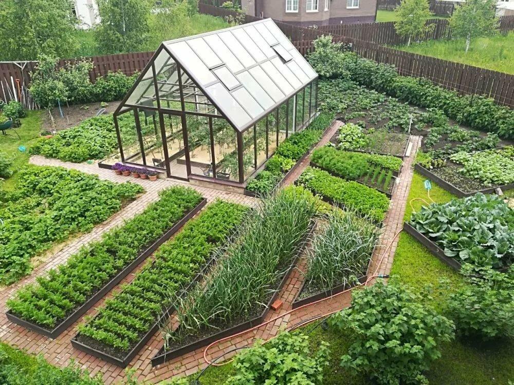 мои дизайн огорода фото с посадками овощей храните сладости
