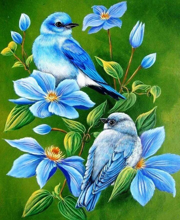 Поздравление мужчине, открытки птицы и цветы