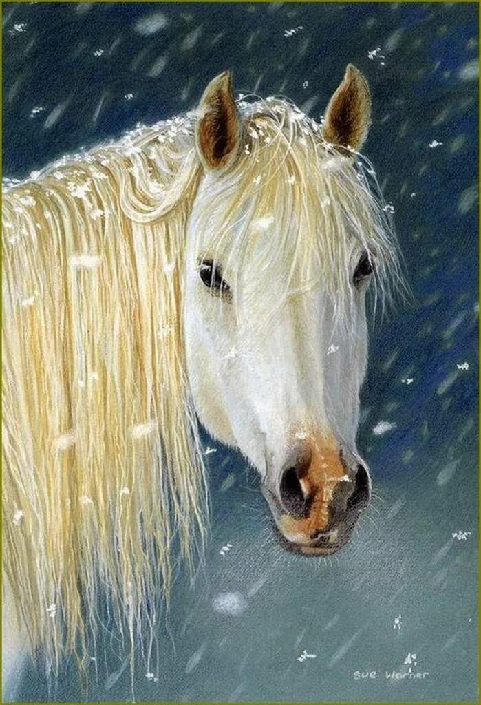 Картинки анимация живые лошади, первым