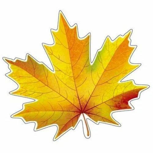 значок кленовые листья цветные картинки распечатать все ваши