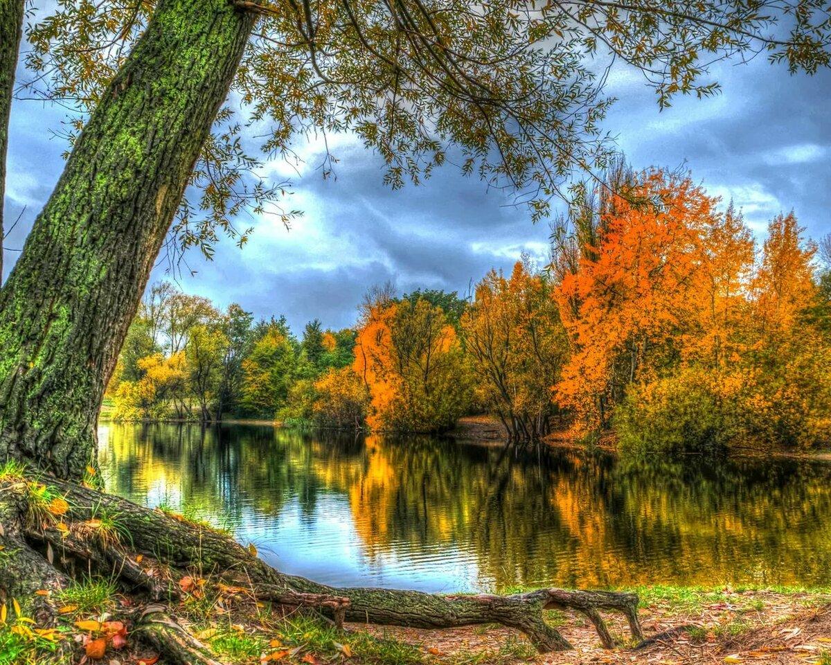 Картинки природы времена года