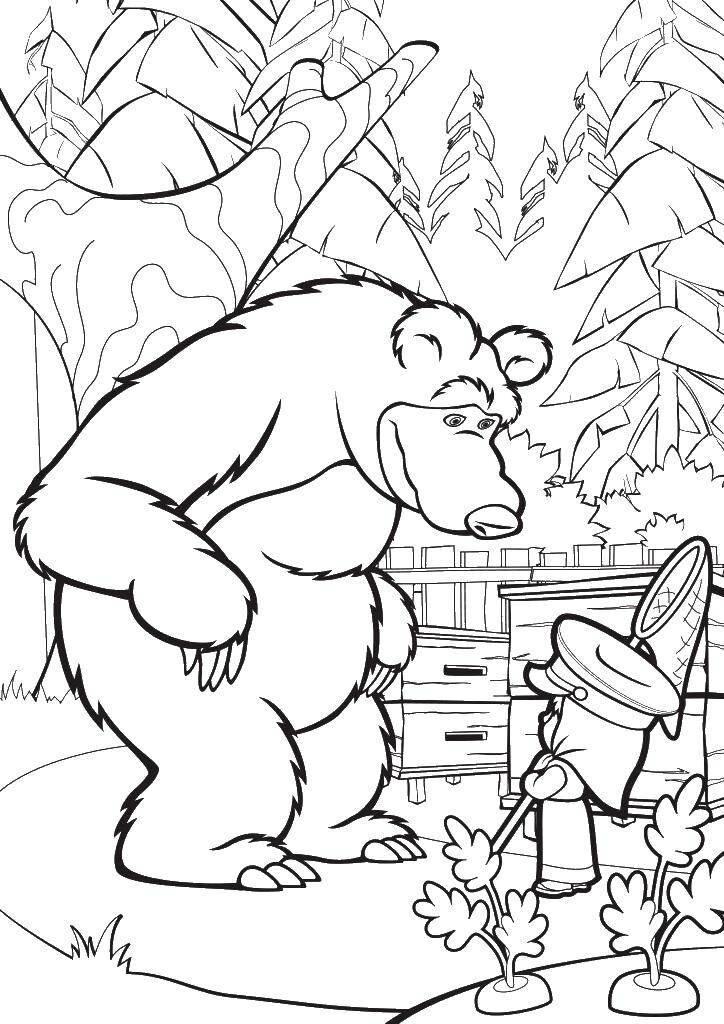 любишь маша и медведь черно белый рисунок вторая часть