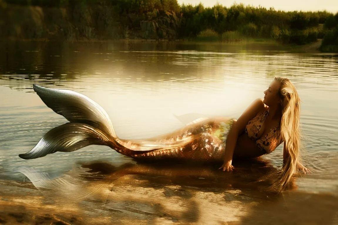 разберёмся вместе, картинки русалок настоящих сирен превосходнейшей фигурой