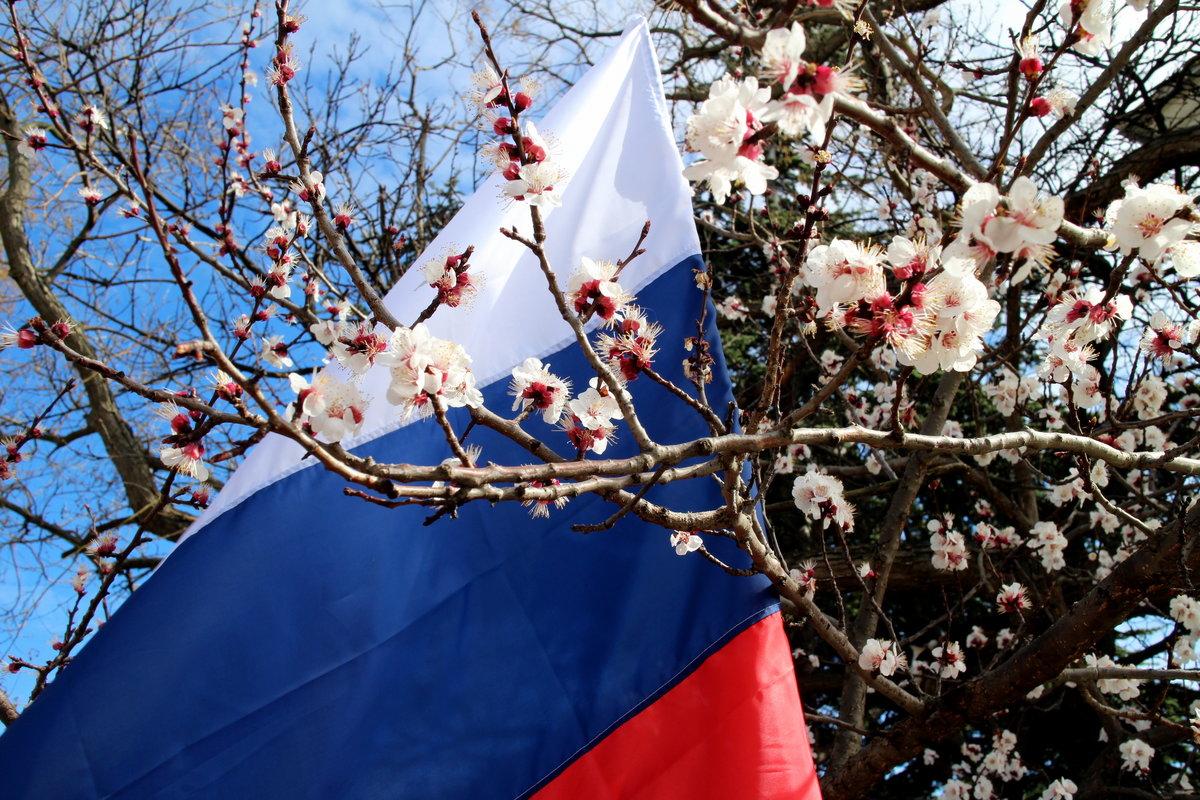 Правильно, картинки к пятилетию крымской весны