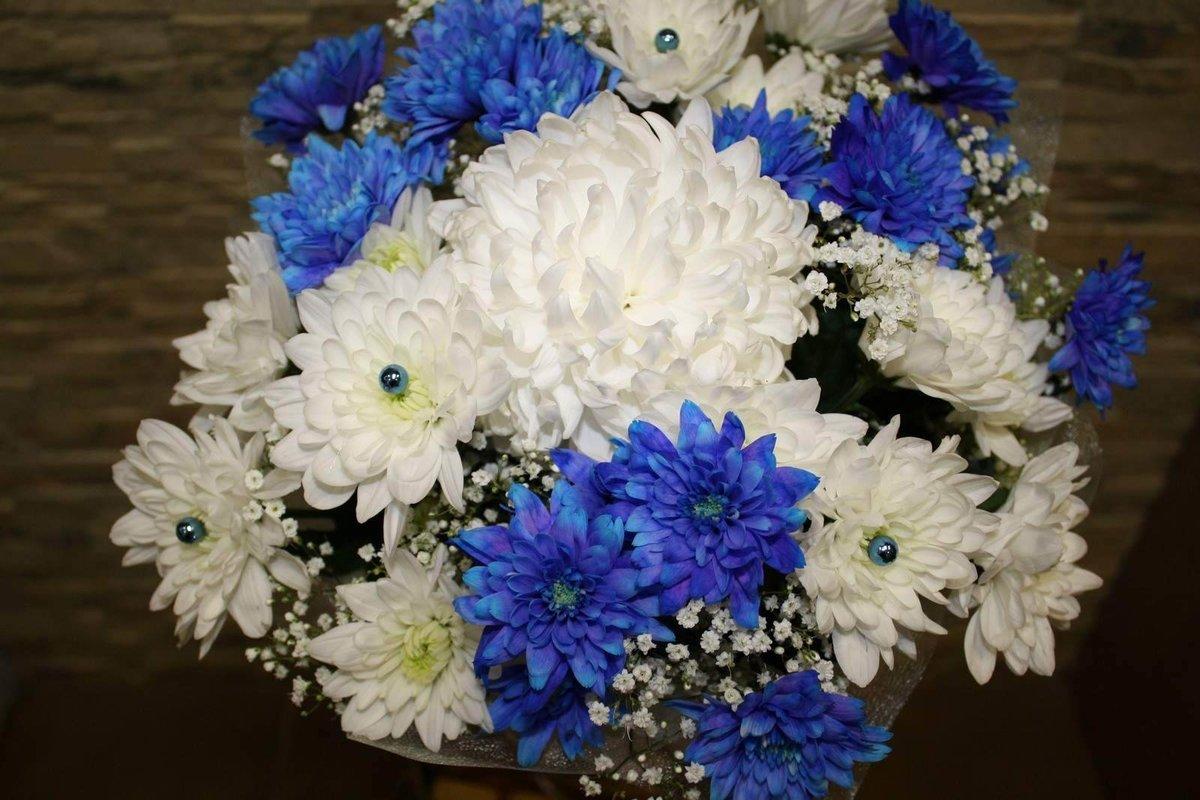 большой букет синие хризантемы фото лайтрум