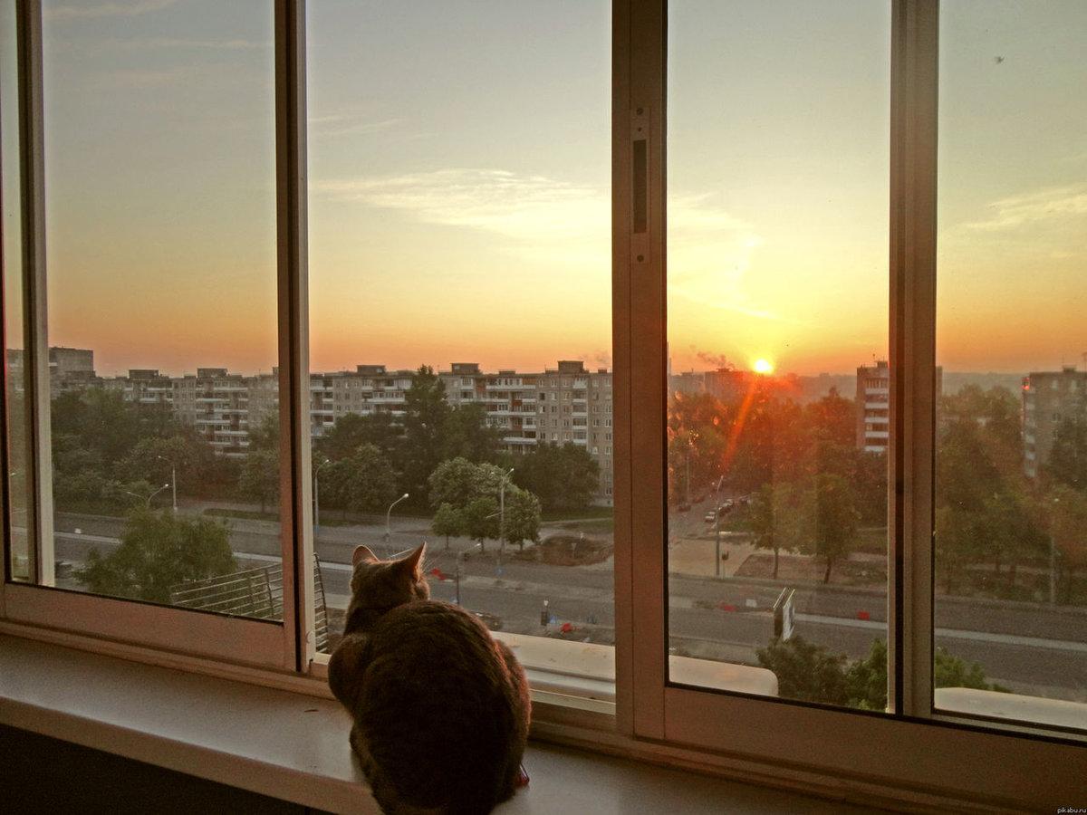 Картинка рассвет в окне