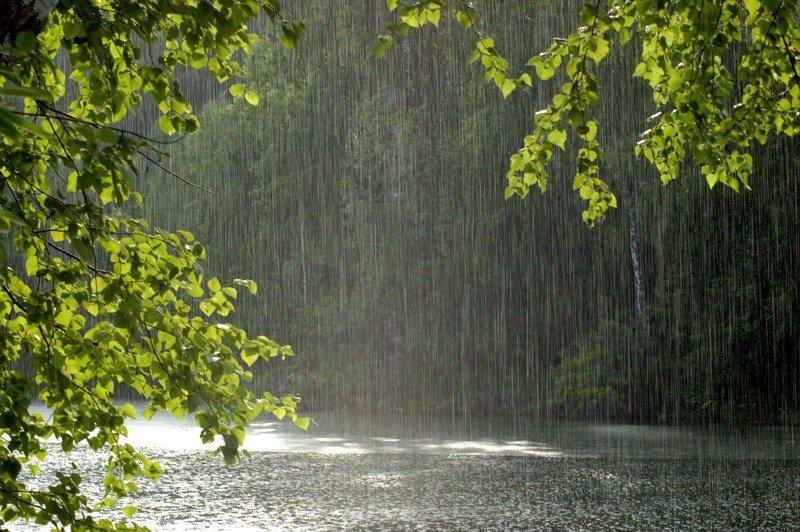 Картинки природы ливень