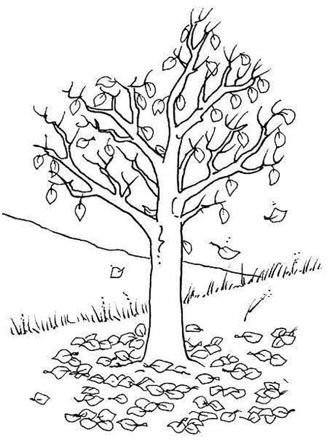 «дерево с опадающими листьями» — карточка пользователя ...
