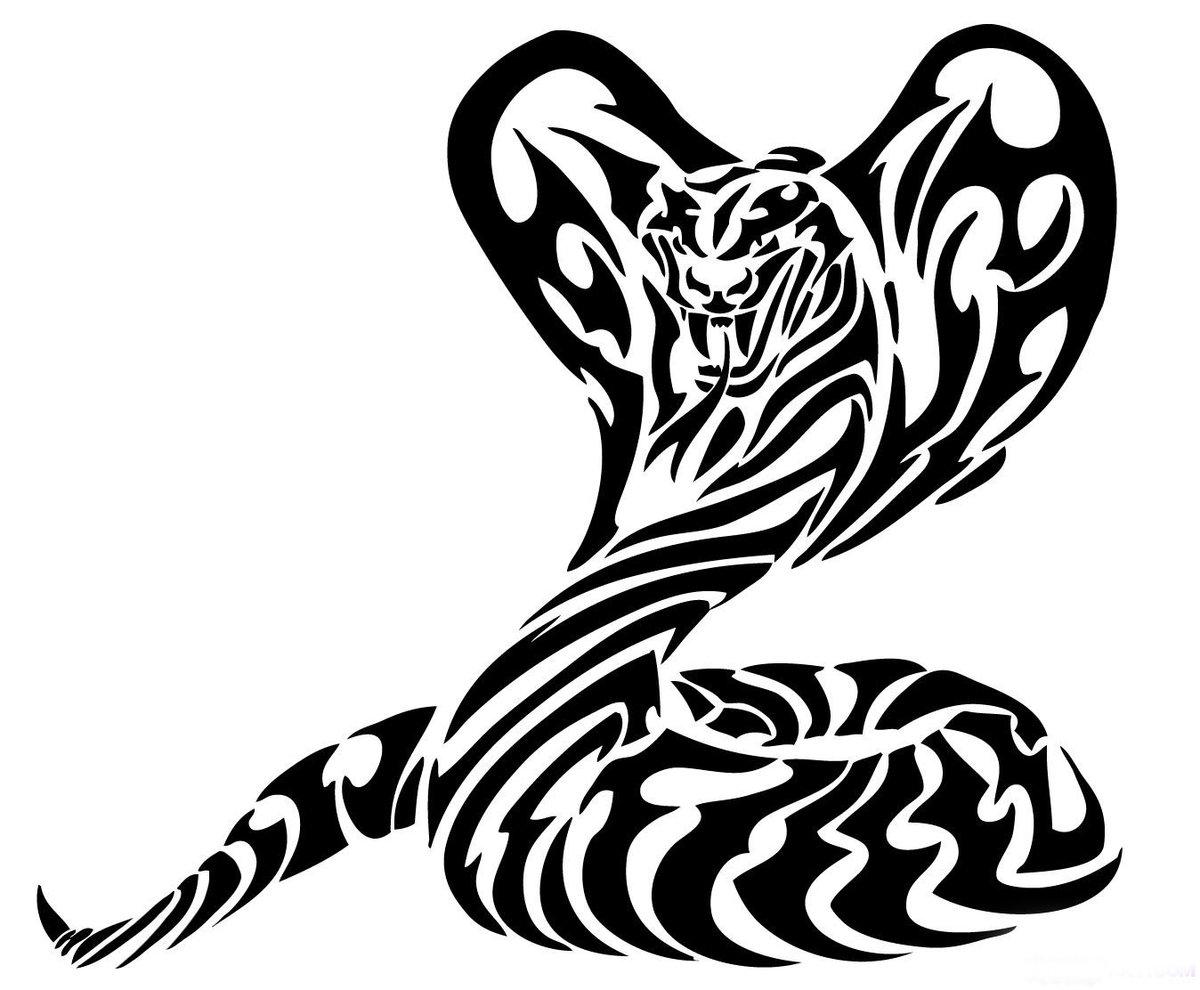 новый картинки абстракция черно-белые для тату кадры были хорошими