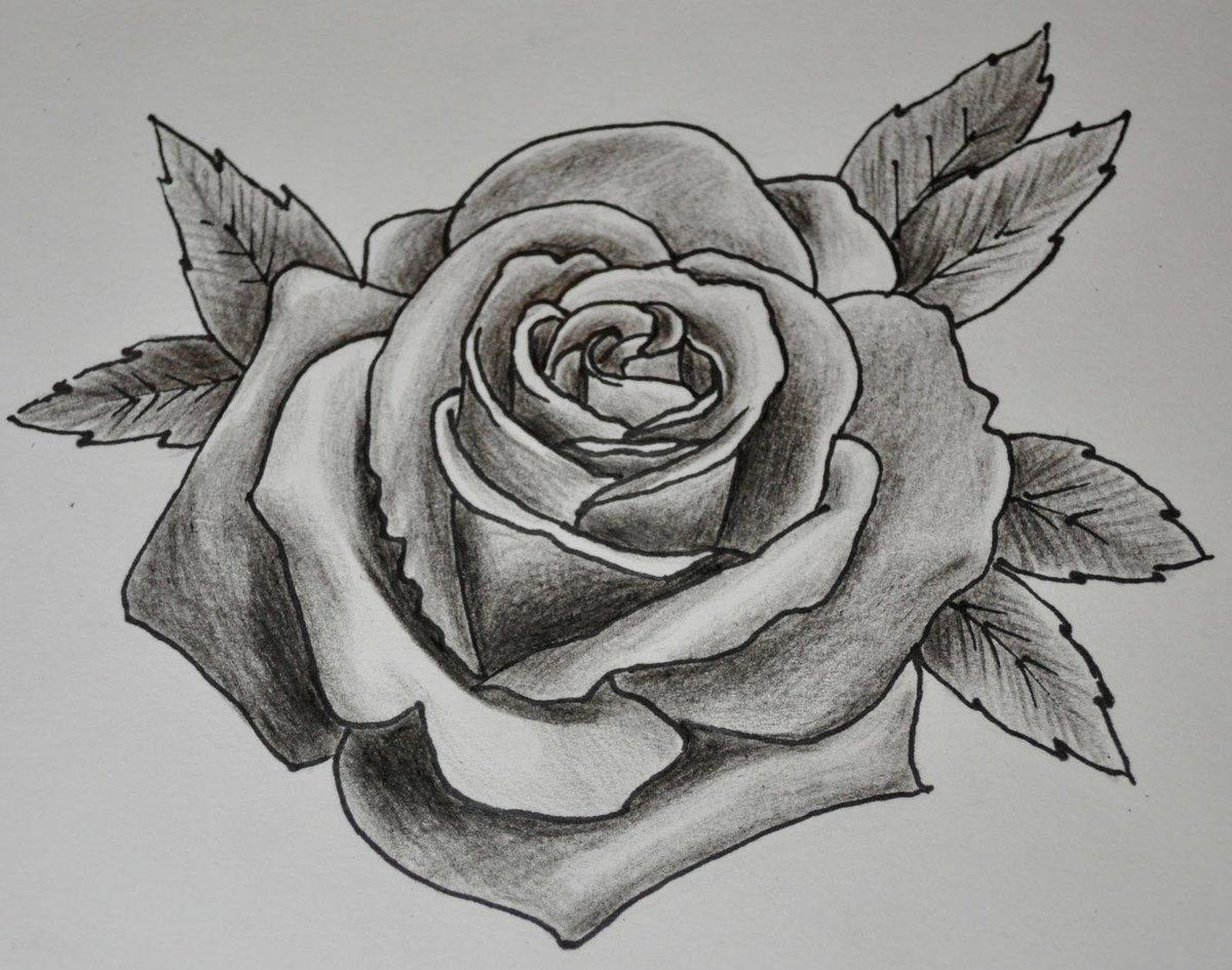 Для, розы картинки рисунки