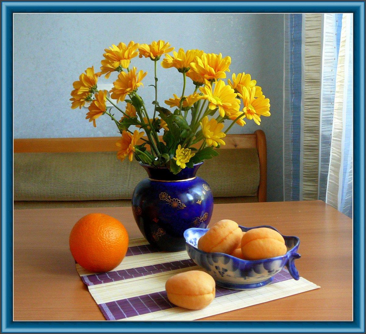 семена как фотографировать натюрморт в домашних условиях учиться