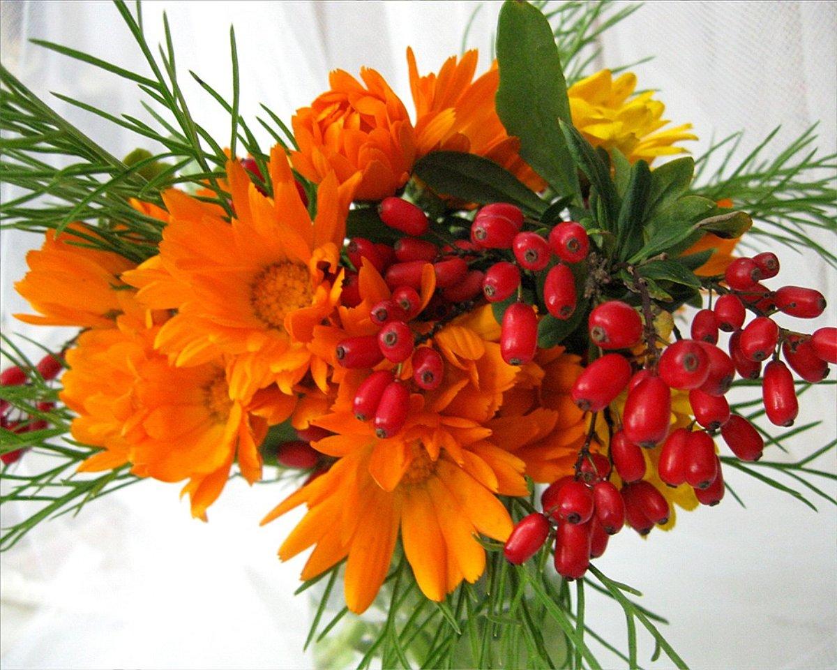 Служил, поздравить женщину с днем рождения открытка с осенними цветами