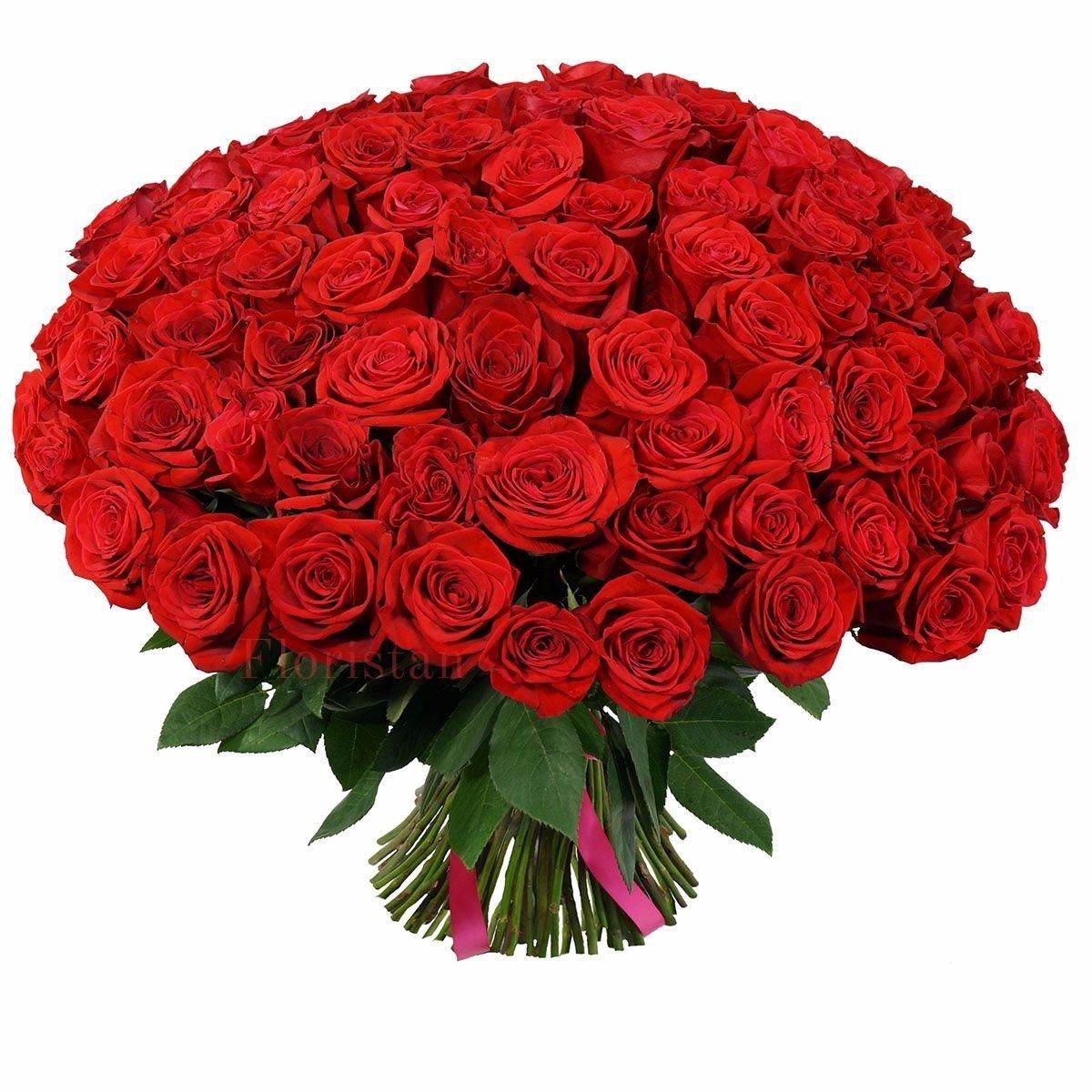 Спираль роз, цветы каталог с доставкой минске