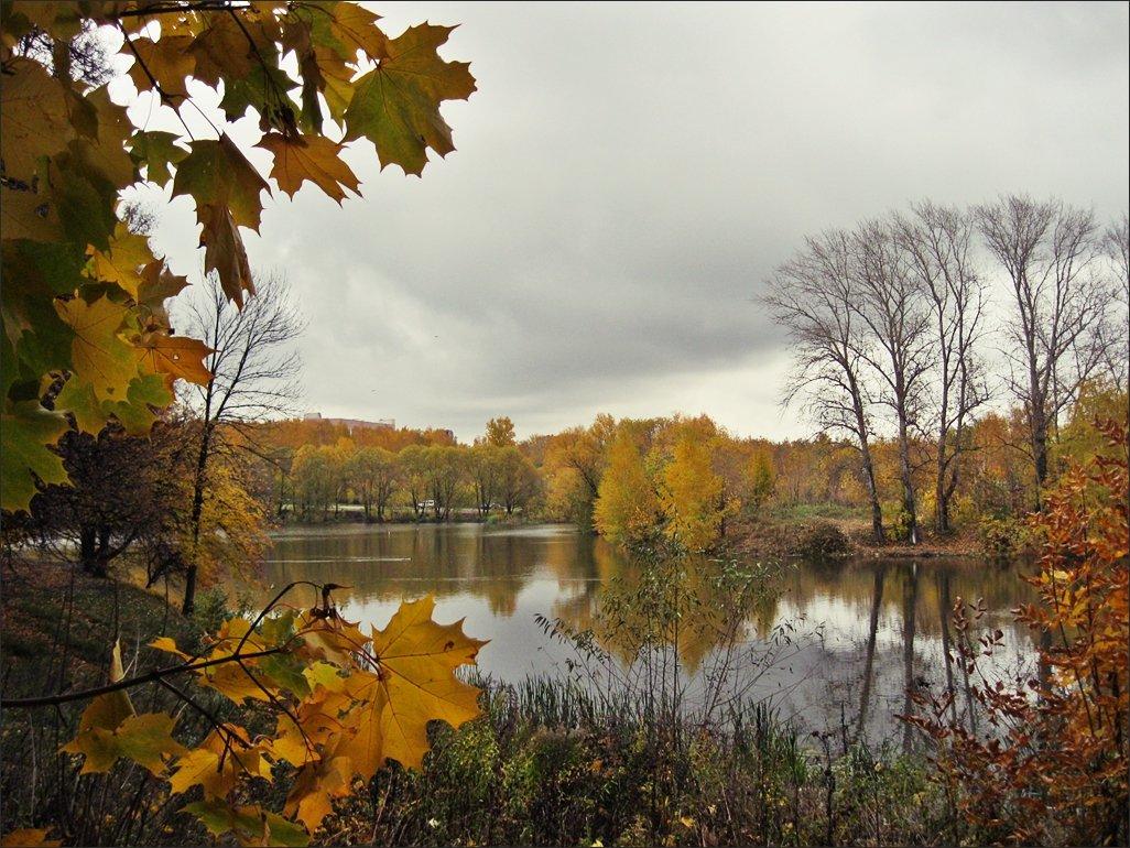 Осенний октябрь фото