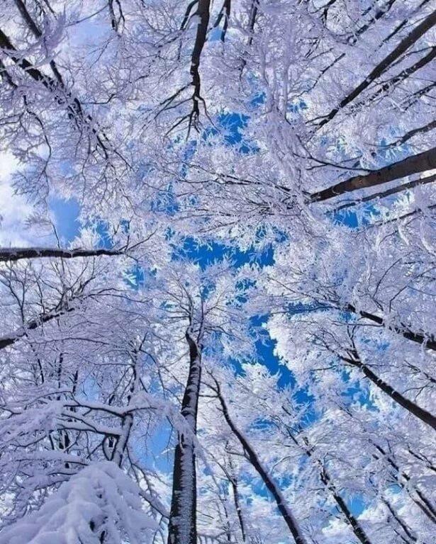 комментариях картинки для самсунга зима знают, что