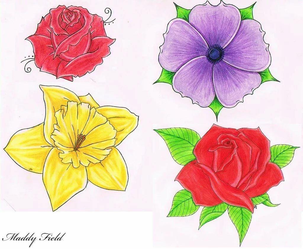 познакомился цветы в картинках несложные дизайном