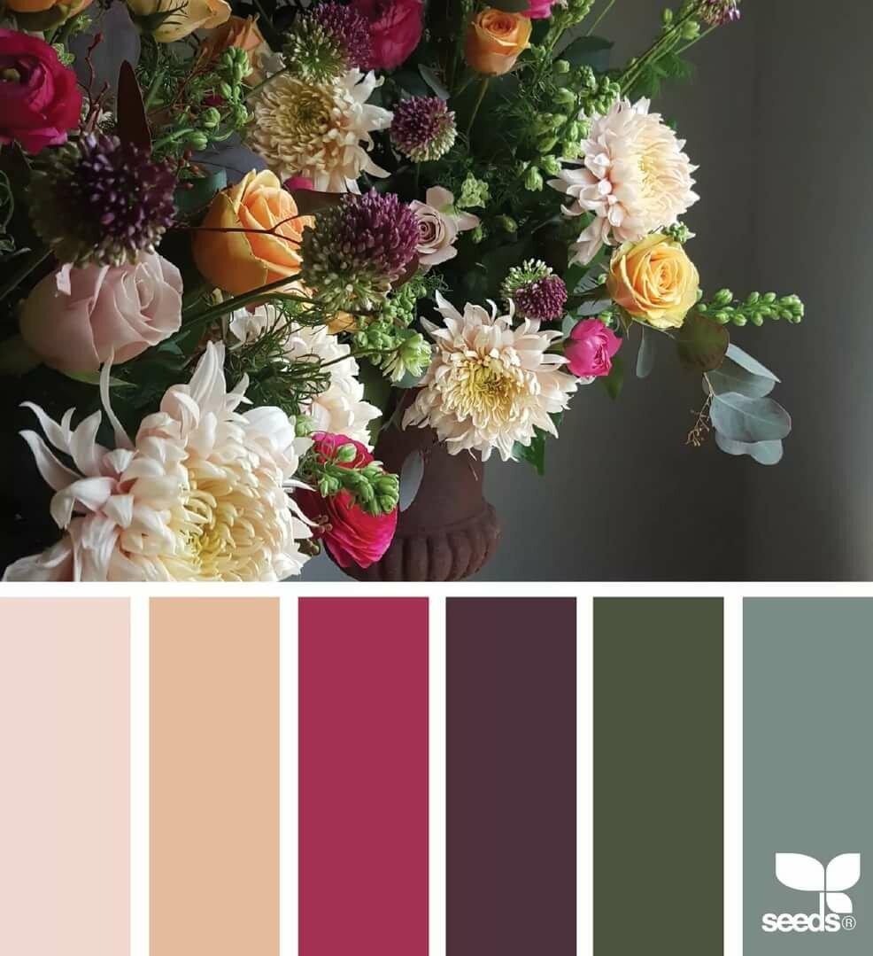 этот подобрать палитру цветов по картинке салат радиккьо бальзамический