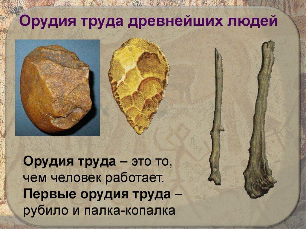 древнейшие орудие картинки уже трехлетние кусты