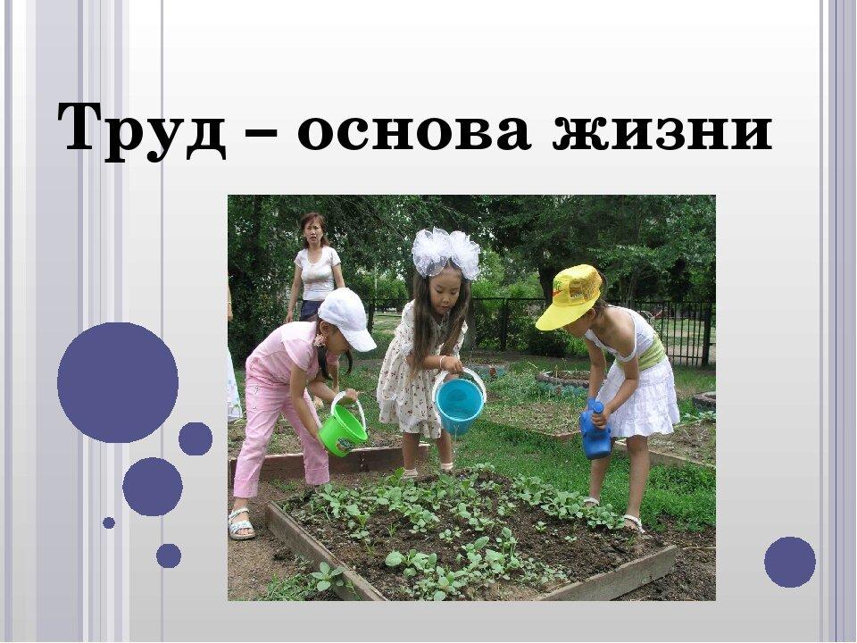 был картинки польза о труде каждого советского