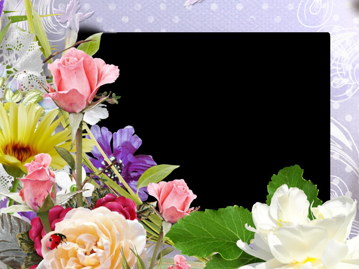 Фотошоп открытки оформление