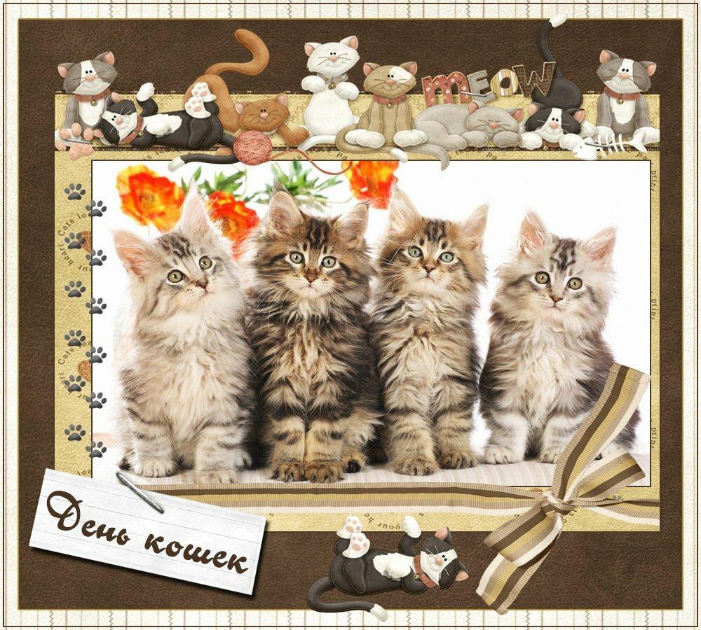 Месяцев вместе, открытки к дню кошек