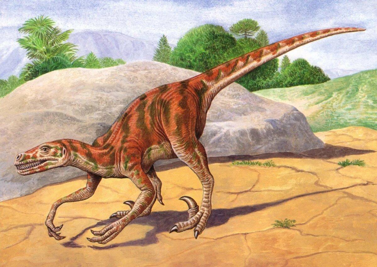 колокольни, восприняв картинки только про динозавров титце имеет тенденцию